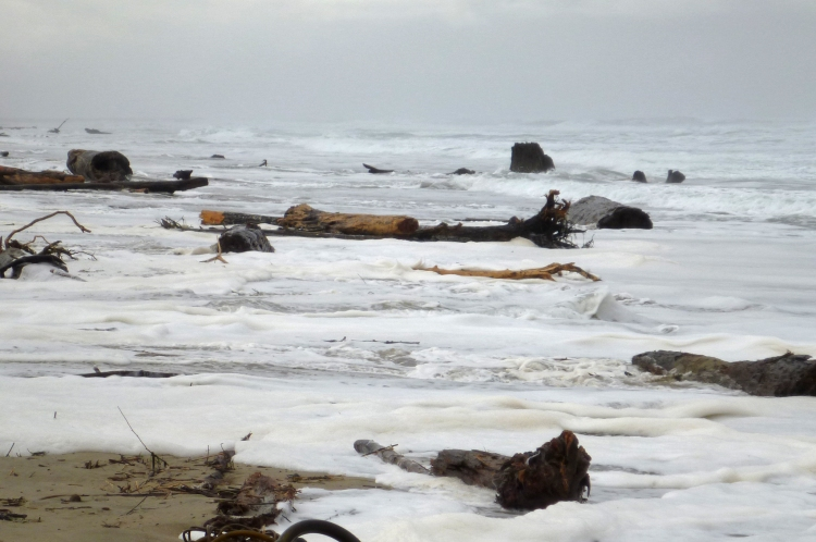 December 12, 2012 - high tide 10.4', NW swell 13', wind waves 3'