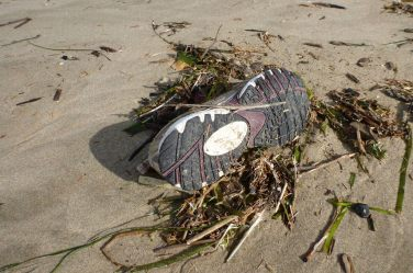 Athletic shoe on sand, with some other drift line debris