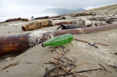 Empty green sparkling water bottle, up in the wrack