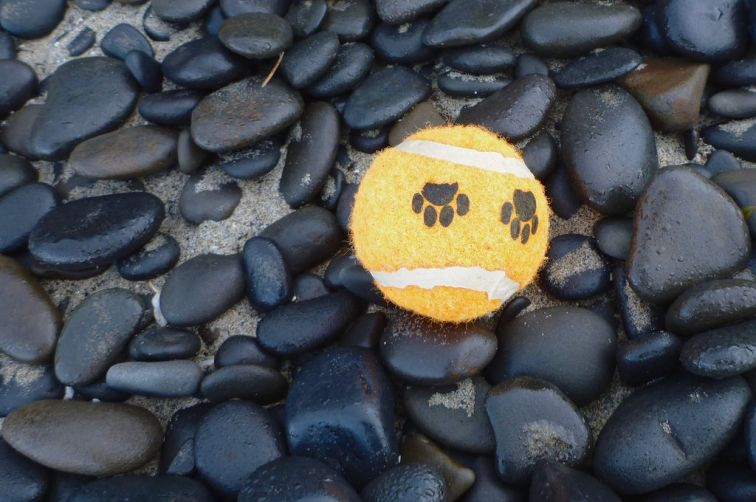 Tennis ball on wet cobbles