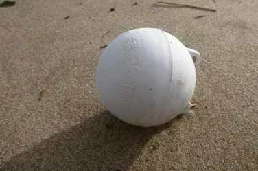White with kanji on the opposite side from the lugs, on beach sand