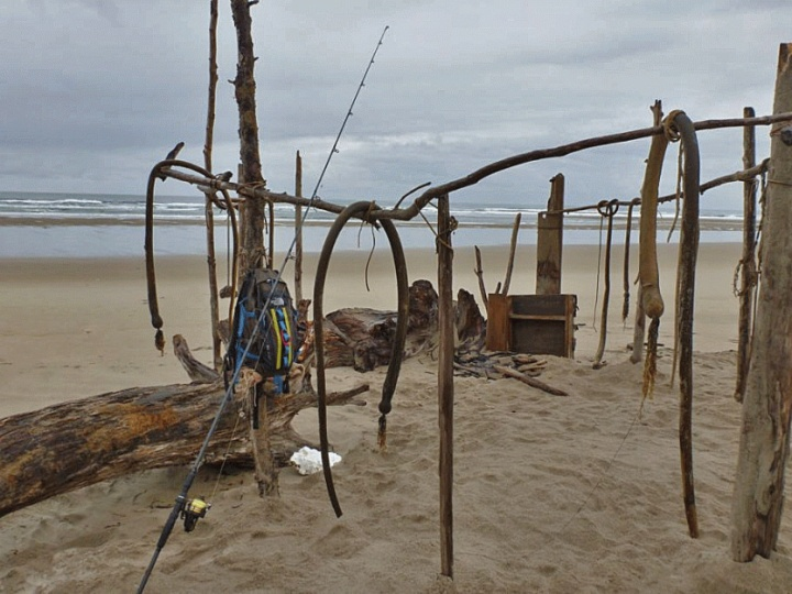buch of sticks and kelp in the sand make a good sized fort on the beach