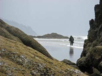 Wandering the beaches