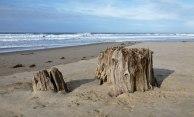 January 1, 2014, high tide 10.4', 5' swell, 1' wind waves 1'.