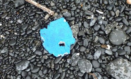 Flip flop remnant