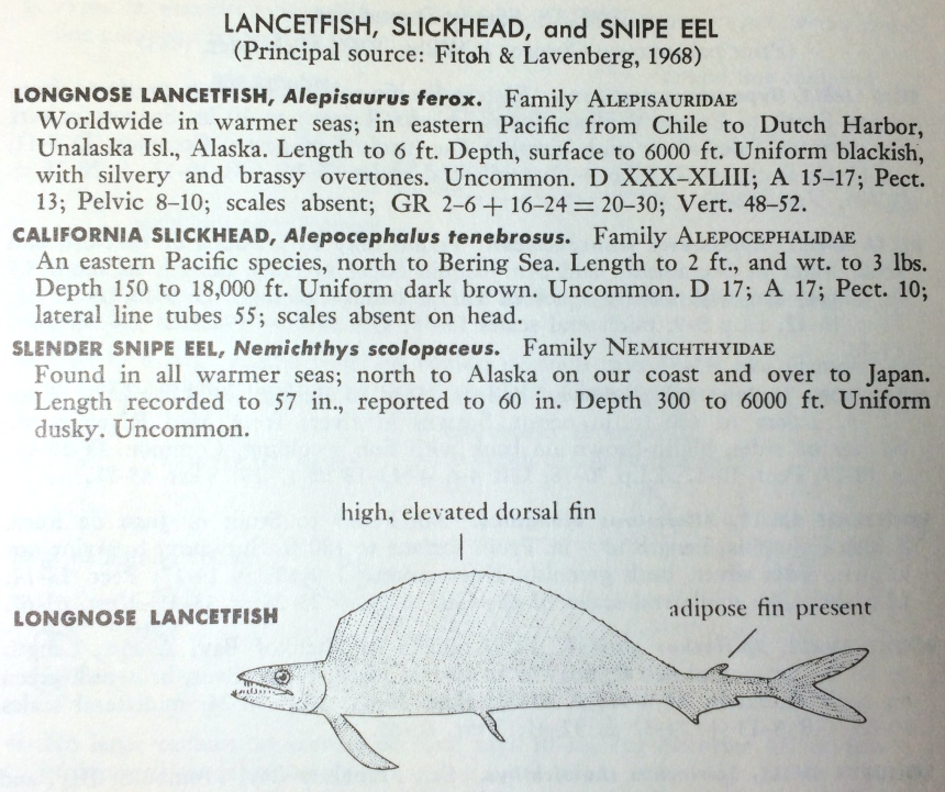 From: Miller, D. J. and R. N. Lea. 1972. Guide to the Coastal Marine Fishes of California. California Fish Bulletin Number 157. California Department of Fish and Game, Sacramento.