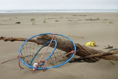Lost recreational crab gear