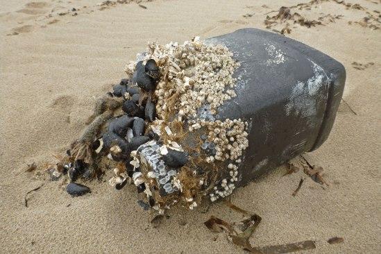 Lost DIY buoy