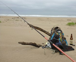 Dropped off my gear while I got to know Alloniscus on the backshore