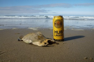 Egg case with a pounder beer can for scale