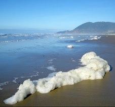 Sea foam snake, or is than an oarfish?