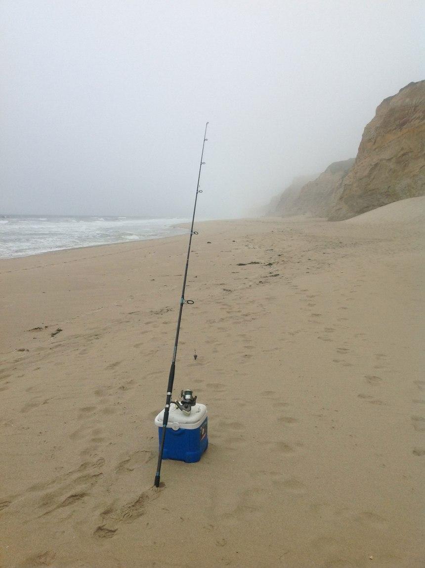 Morning at N Pescadero