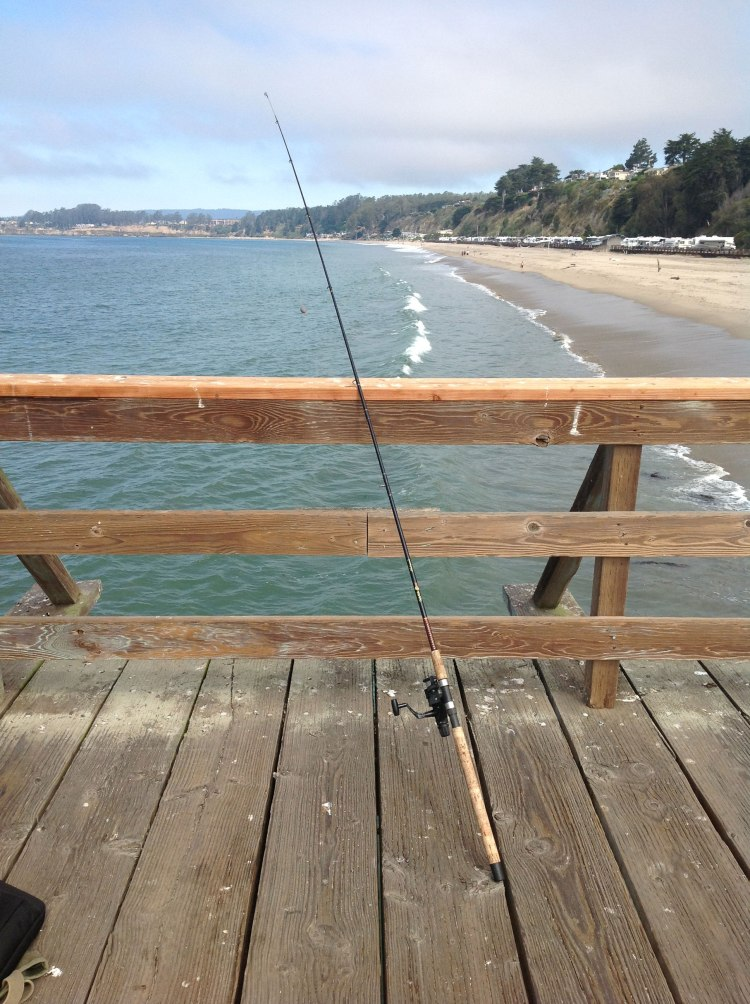 Rod for Seacliff