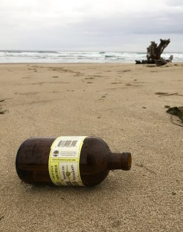 Drift kombucha bottle; surf and drift stump beyond