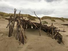 Driftwood fort against the foredune