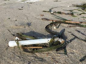 chemical glow sticks, lost fishing gear