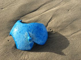 Blue buoy fragment | November