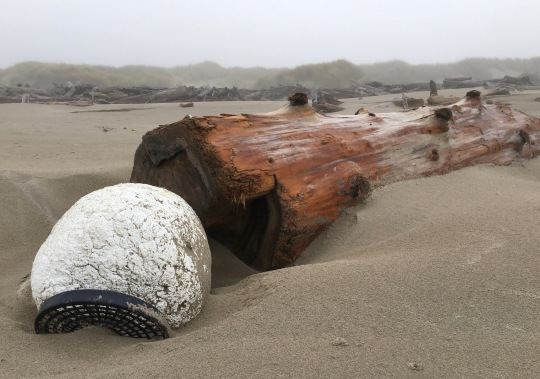 Big drift log, big float, lost gear   September