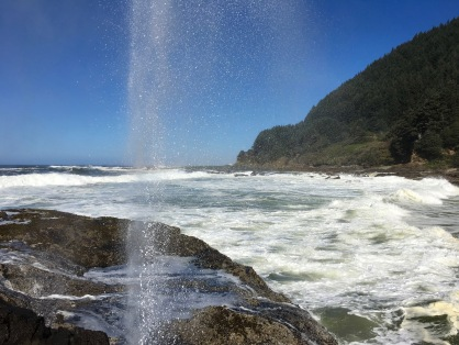 A little blowhole