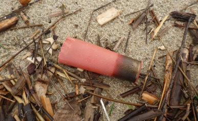 The case - part of a shotgun shell