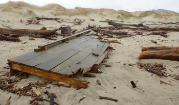 Lost dock - freshly treated lumber