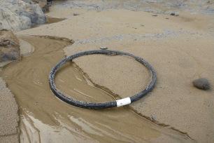 Crab trap ring
