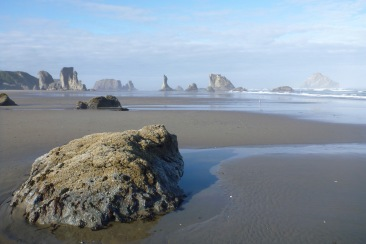 Island in the sand   Coquille Point, Oregon   May