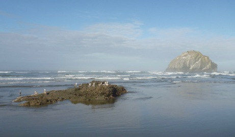 Low tide rest | Coquille Point, Oregon