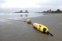 Lost crab buoy   June