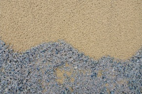 Waves of Velella velella