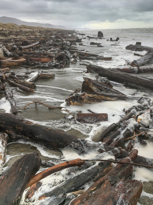 High tides and big surf mobilize drift logs