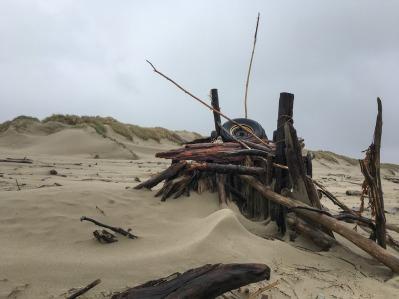 Driftwood fort, logs old tire, drift algae - foredune in the background