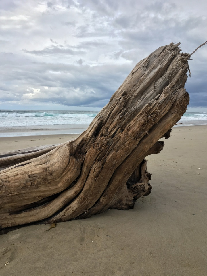 Big drift log just above the surf