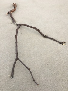 A small branch on sand