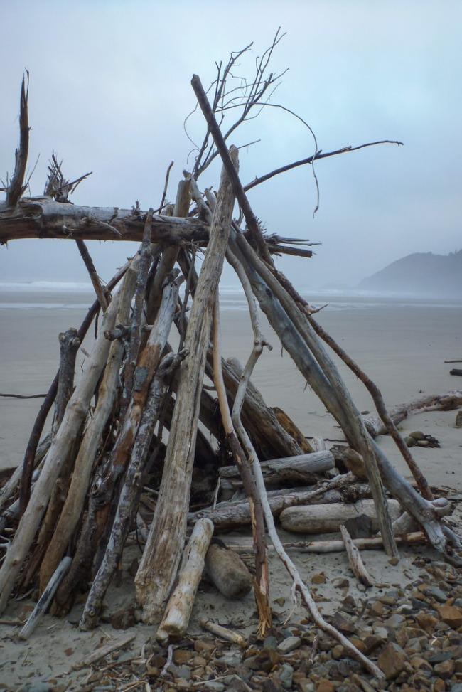 A-frame driftwood shelter