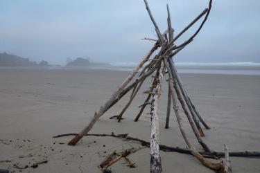 tripod-like driftwood structure