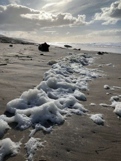 Sea foam left behind by the falling tide