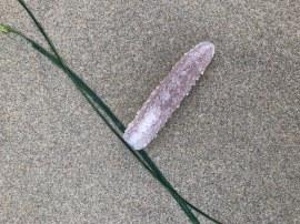 Detail on beach sand