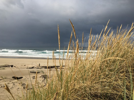 Beachgrass in the foreground, breakers and an ominous sky in the background