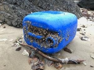 Blue plastic carboy
