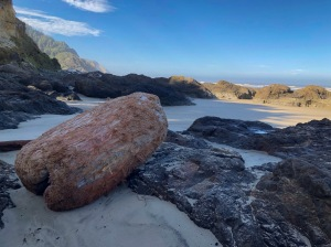 A big rounded off log up in high intertidal rocks