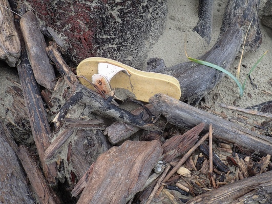 lost sandal