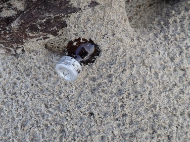 Small dark glass bottle mostly buried in sand