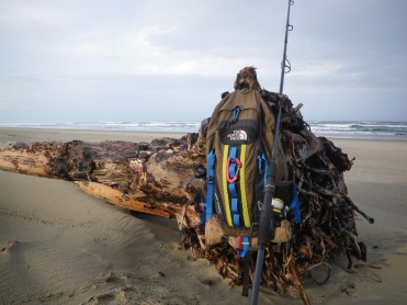 Pack and fishing rod on a drifted log