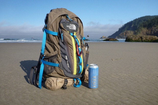 Pack, standing upright on beach, there's a large black bee hovering next to the pack!