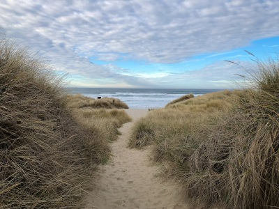 Sandy path across the foredune, view out to sea