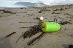 It's the season for lost floats and buoys | Here, local Dungeness crab trap buoys