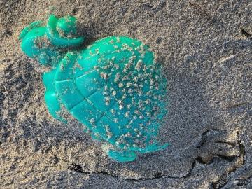 Plastic turtle