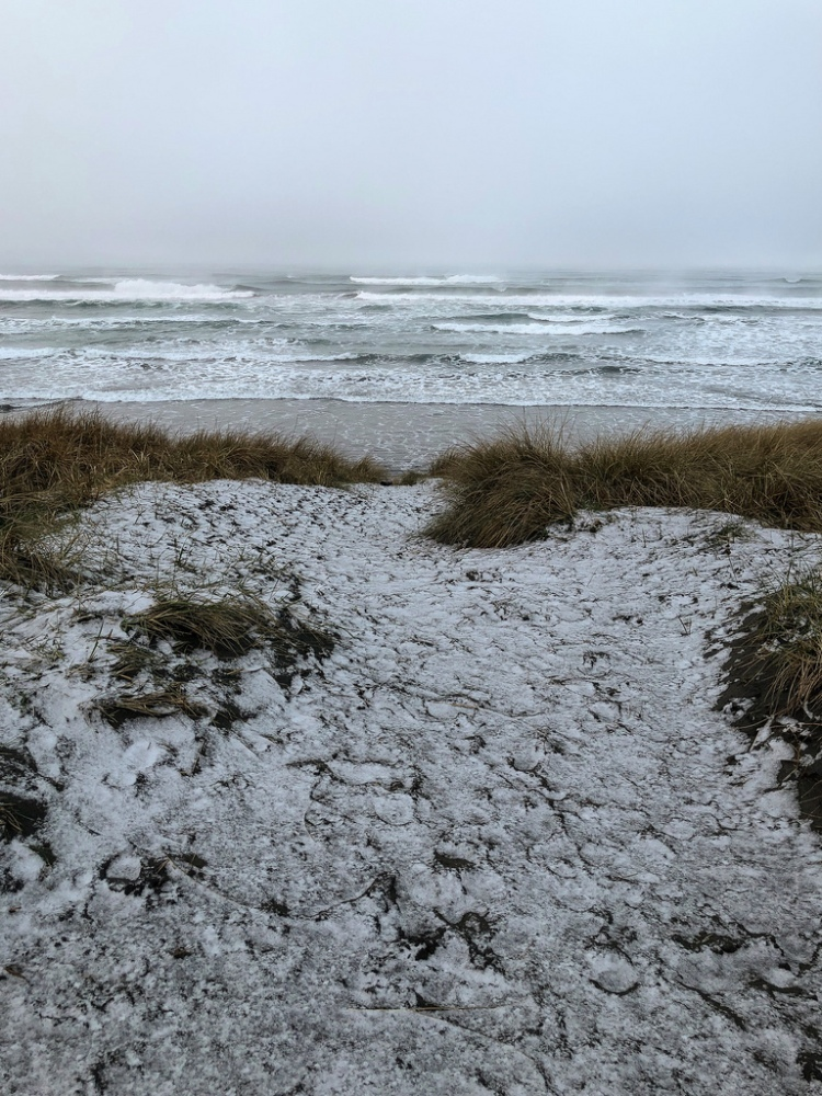 A dusting of snow on the foredune; view to sea. A bleak morning