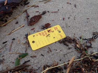 A yellow tag, looks like a tag for a key ring from an auto repair shop- New, used, make, model, color...
